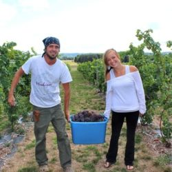 Torch Lake Cellars, LLC