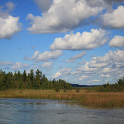 Grass River Natural Area Inc.