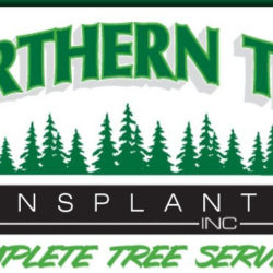 Northern Tree Transplant & Landscape Inc.