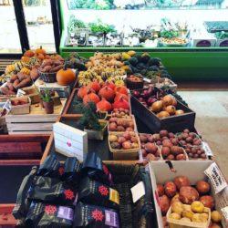 Providence Organic Farm & CSA