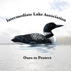 Intermediate Lake Association