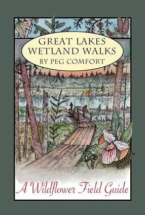 Grass River Natural Area announces Great Lakes Wetland Walks: A Wildflower Field Guide by Peg Comfort.