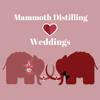 Read more about the article Planning a wedding this year?