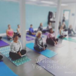 Yoga Bellaire – Fall Update