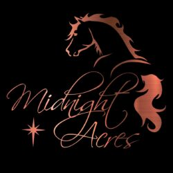 Midnight Acres